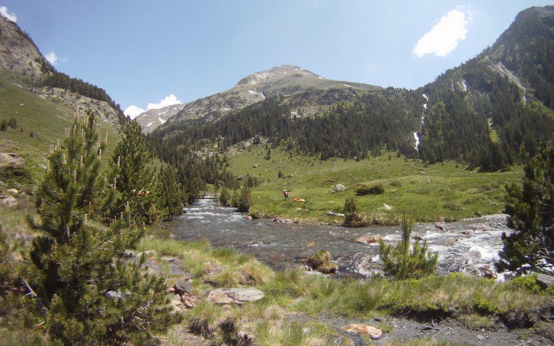 Reversión de la concesión de agua del Río Cinqueta.